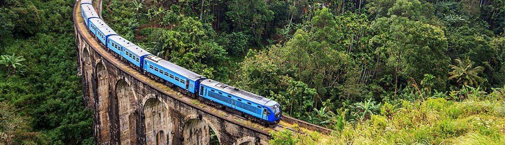 Sri Lankan Summer Exploration